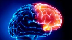 Sueño y epilepsia?